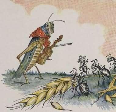 Semut & Belalang
